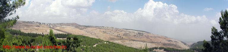 Вид из леса Бирия на окрестности