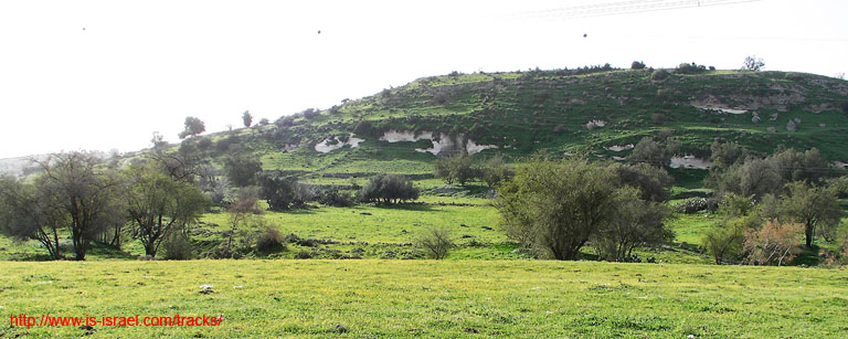 Вид на холм Тель Цафит