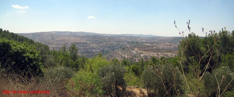 Вид назаповедник Иудейские Горы
